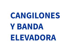 CANGILONES Y BANDA ELEVADORA